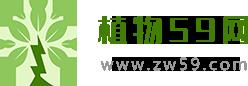 植物资讯网